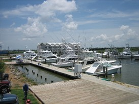 Cypress  Cove  Marina 1