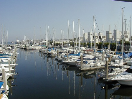 The Harborage Marina at Bayboro
