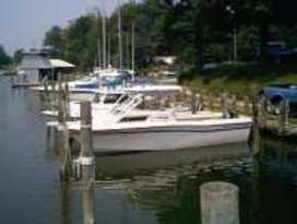Buzzards Point Marina 1