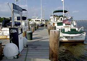 Chestertown Marina 3