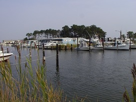 Dandy Haven Marina 1