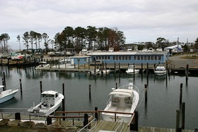 Dandy Haven Marina 5