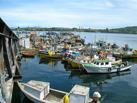 Puerto Quellon 1