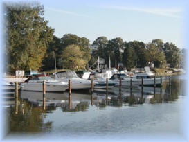 Sunset Harbor Marina 3