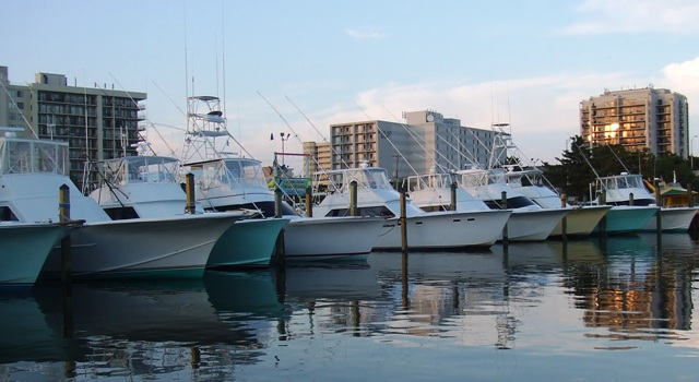 Virginia Beach Fishing Marina
