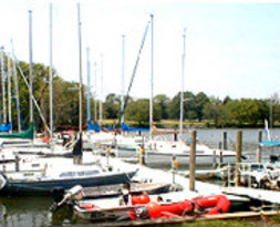 Washington Sailing Marina 1