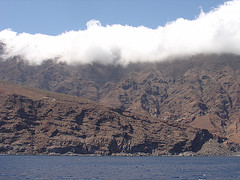 Isla Guadalupe (South Anchorages) (2)