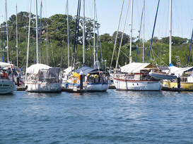 Bocas Yacht Club and Marina 3