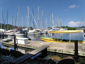 Bocas Yacht Club and Marina 10