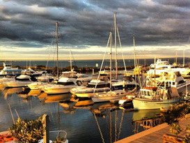 Queenscliff Harbour 5