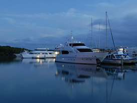 The Reef Marina - Port Douglas 5