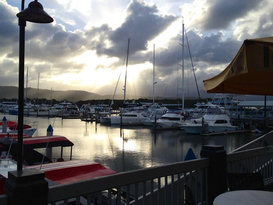 The Reef Marina - Port Douglas 7