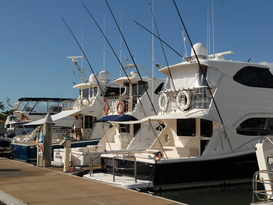The Reef Marina - Port Douglas 8